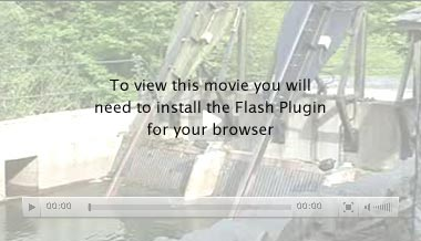 placeholder for flash movie